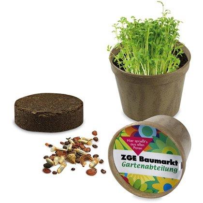 Topfpflanze Organica